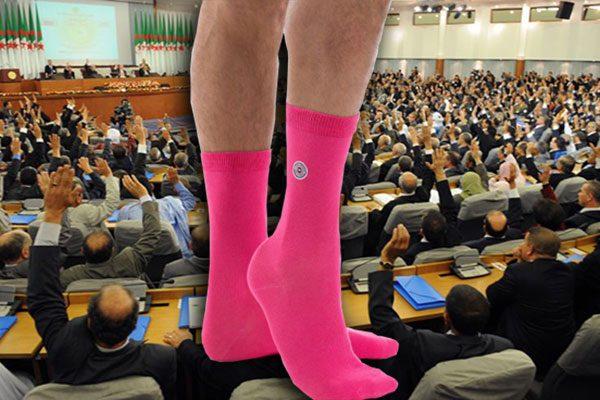 في ذكرى عيدهن.. كيف يصطاد السياسي الإناث بالجوارب الوردية