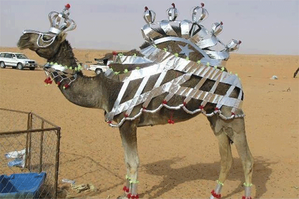 بوتكس الجمال في السعودية يُدهش الغرب؟