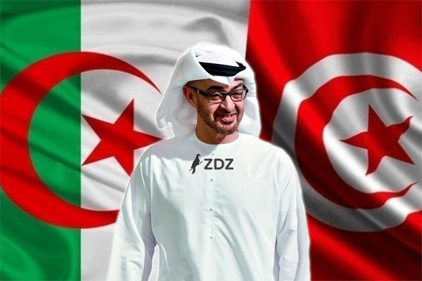 الجزائر تُحبط إنقلابا إماراتيا في تونس!