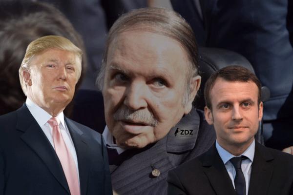 رهانات الدعم الأمريكي والفرنسي لترشيح بوتفليقة