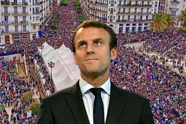 لماذا هز الحراك الجزائري عرش فرنسا؟