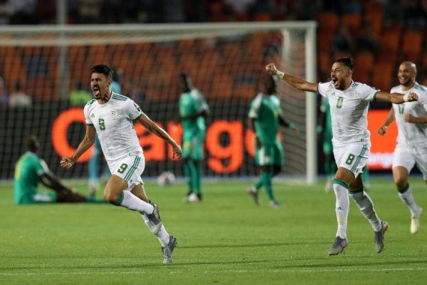الجزائر تتسيّد إفريقيا.. ارفع راسك ياباّ!