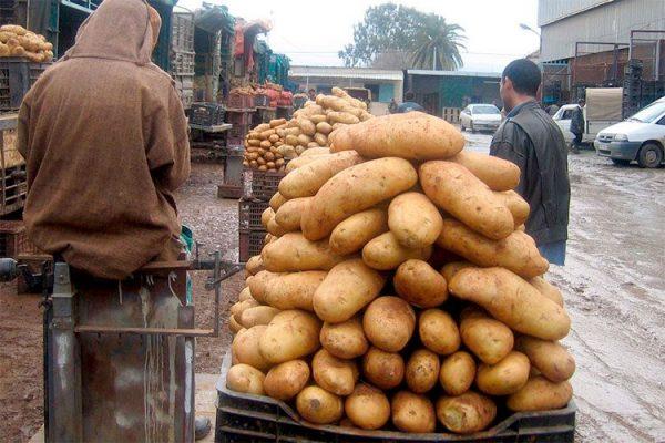 """من يشنّ """"مؤامرة البطاطا"""" على الجزائر؟"""
