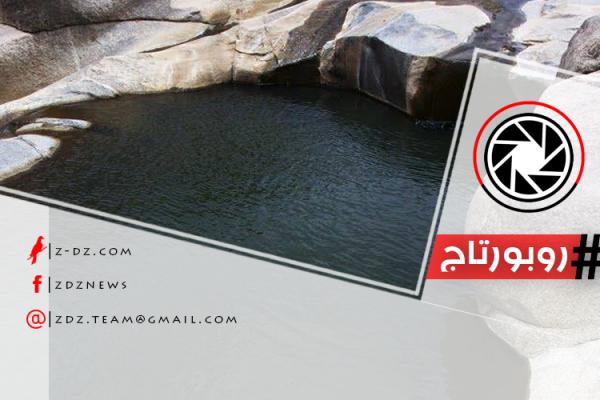 """محمية """"قلتة أفيلال"""".. نبض الحياة في صحراء الجزائر"""