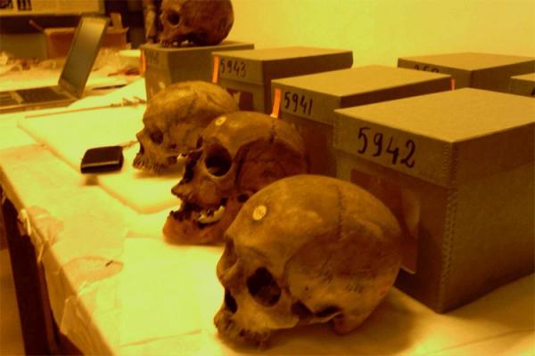 متحف الإنسان.. شاهد على جرائم الإستعمار الفرنسي!