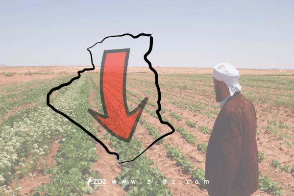 هذه أسباب تدهور الأمن الغذائي في الجزائر؟!