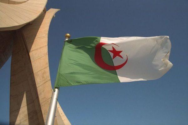 الجزائريون يردون على نظام المخزن