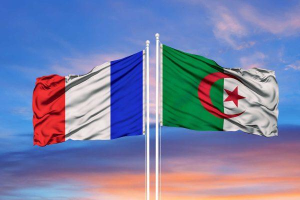 أفضل رد يوجع فرنسا..!