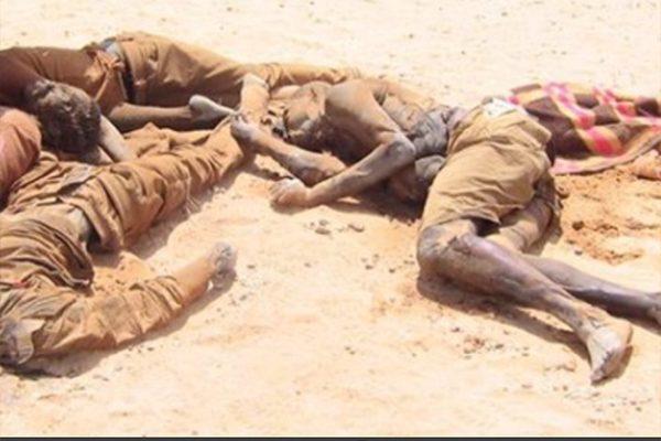 العطش يهلك 23 إفريقيا قرب الحدود الجزائرية